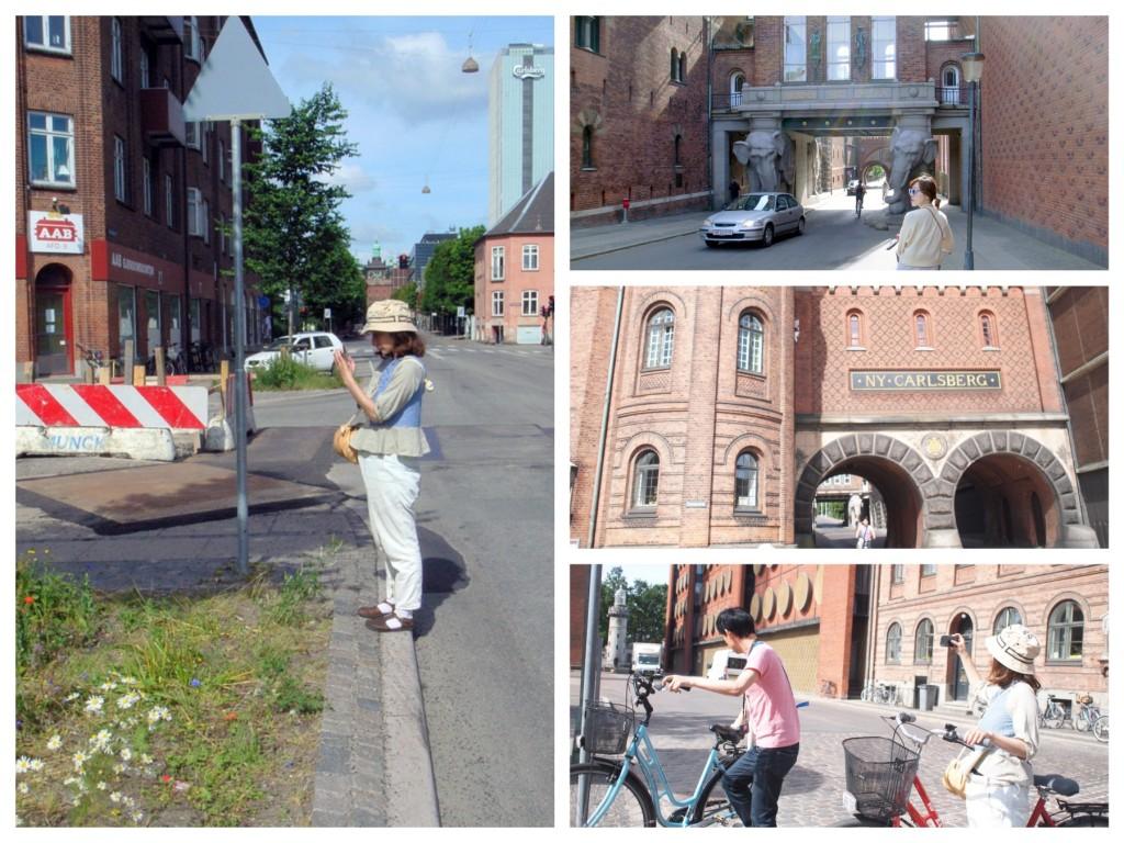 市街地へのサイクリング
